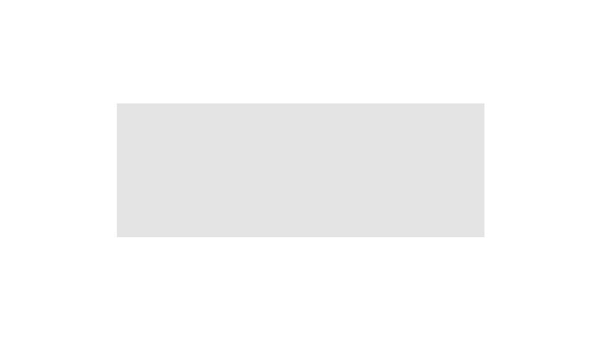 Designerstahl-Logo-aviant